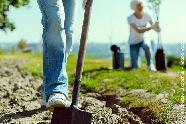 Ökologisch sinnvolle Jobs